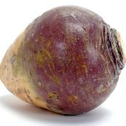 Rutabaga21