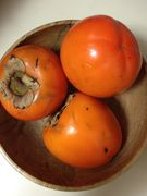 47393_how_do_i_know_if_my_persimmons_are_ripe_