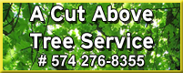 A Cut Above Tree Service