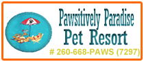 Pawsitively Paradise Pet Resort