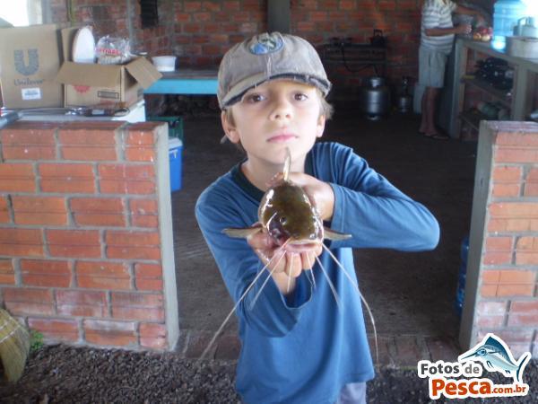 foto Jundiá com File de Peixe em  OUTROS LAGOS -