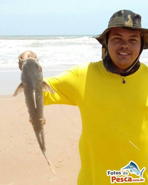 foto Bagres e Cat-fishes com Camarão Morto em  OUTROS MARES - Bagre pego na Barra do Itariri com camarão morto