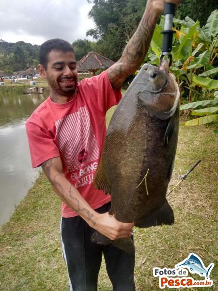 foto Tambacu com Massa em Pesqueiro Peixe Grande - O maior peixe que peguei no pesqueiro, briga longa,garantindo minha felicidade!