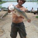 Foto de  OUTRAS - melhor um mal dia de pesca do q um bom dia de serviço.                   tick