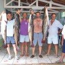 Foto de Pintado - equipe de pesca de santo amaro são paulo piloteiro abidias (abidiaspescadorsp@hotmail.com )