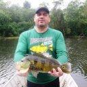Foto de Pintado - Pescaria esportiva maravilhosa realizada em uma lagoa do rio parana