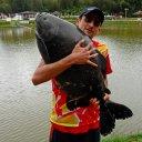 Pesqueiro peixe grande