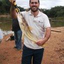 Foto de Piranha - Mandi de 2,700 KG fisgado no município de Doresópolis/MG em um trecho do Rio São Francisco conhecido como pesqueiro do marinheiro.