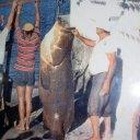 Foto de Badejo grande gigante recorde