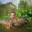 foto de Bagres e Cat-fishes