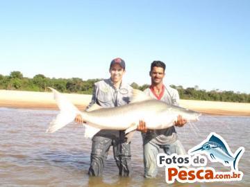 Foto de Piraiba -