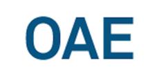 Innovació Disruptiva: Com competir contra el peix gran i guanyar OAE logo