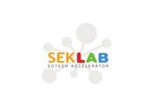 SEK Lab EdTech Accelerator logo