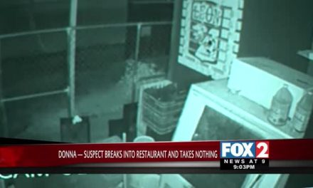 Man Caught on Surveillance Camera Burglarizing Donna Business
