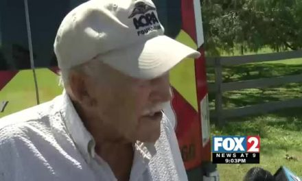 98-Year-Old Pilot Crash Lands into Tree