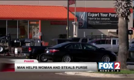 Gentleman Steals Lady's Purse after helping her