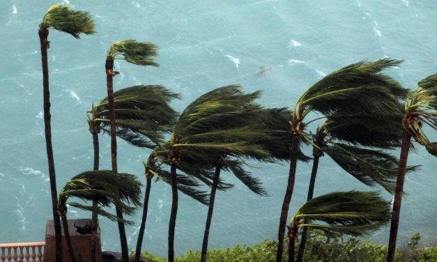 LSU at Florida game postponed as Hurricane Matthew nears