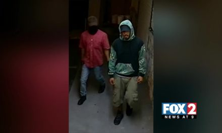 Authorities Search for Burglars