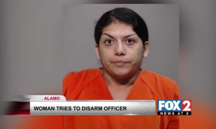 Alamo Woman Faces Charges After Evading Arrest