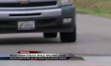 Pedestrian Fatally Struck While Walking Dogs