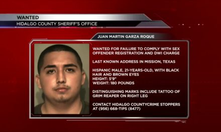 Hidalgo County Sheriff's Search for Fugitive
