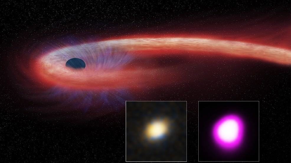 Black hole taking a record-breaking decade to devour a star