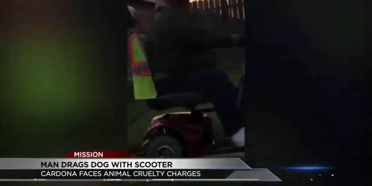 Animal Abuse Video Goes Viral; Leads to Arrest