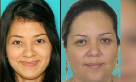 Owners of Briseno construction Wanted for Felony Theft
