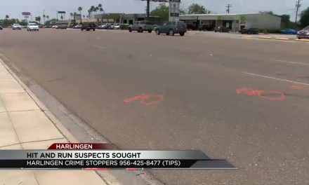 Harlingen Woman Killed in Hit and Run