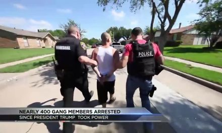 Report: Nearly 400 Gang Members Arrested Across Country