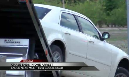 One Detained After Police Chase in Donna