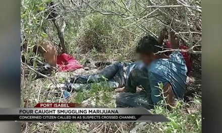 Four Arrested Attempting to Traffic Marijuana
