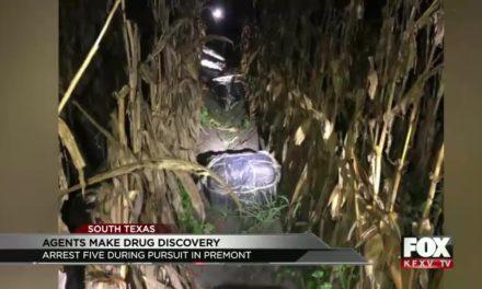 BP Agents Net 5 After Pursuit Near Premont; Discover Abandoned Marijuana