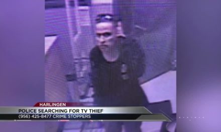 Harlingen Police searching for TV thief