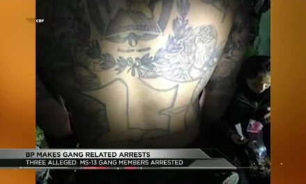 Border Patrol Arrests MS-13 Gang Members