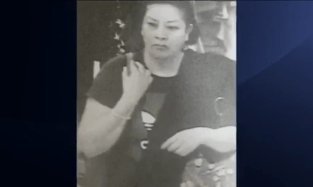 Woman Wanted In Connection with Theft, Seen Leaving In Volkswagen Jetta