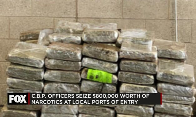 CBP Seize $800,000 in Narcotics