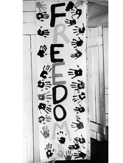 Freedom School Banner