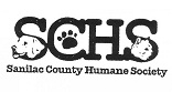 Help Us Care for Homeless Dogs & Cats