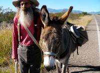 Tombstone's Annual Burro/Donkey Rescue  
