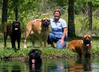Anne Darby Santora Dog Rescue Fund
