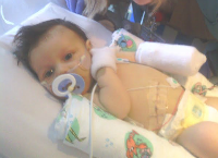 Help Levi in His Fight against Liver Desease