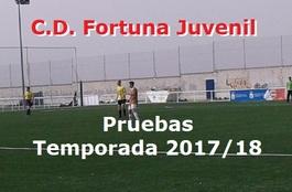 Fortunajuve1718pru