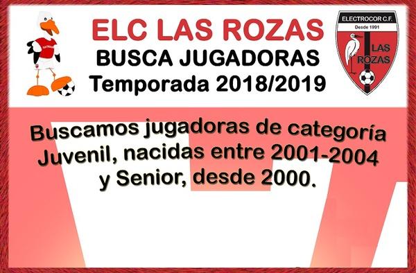 Electrocor Las Rozas busca jugadoras para la temporada 2018/19