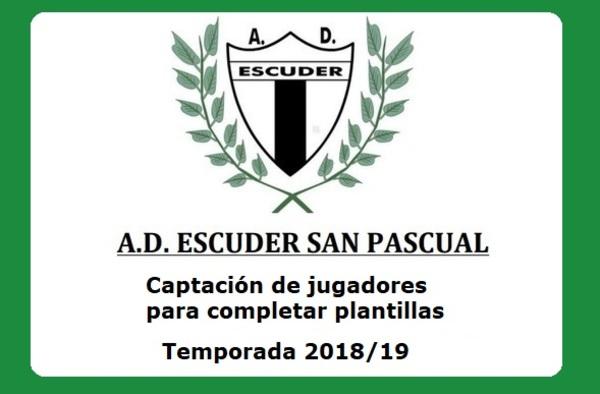 El Escuder San Pascual sigue buscando jugadores para completar las plantillas de sus equipos - Temporada 2018/19