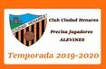 Ciudadhenaresalevin1920po