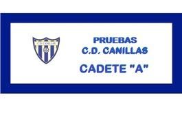 Canillaspreubascadetea1415