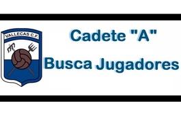 Vallecascadeteabuscajugador1415