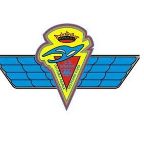 Aviacionescudo