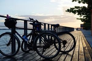 Bike Racks by Lake